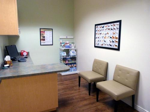 This is our Dog-friendly exam room. It is spacious and allows for plenty of room for your pal to hang out.